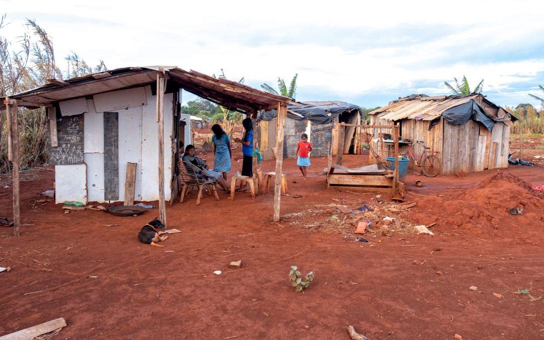 MEMBROS DE ACAMPA CORUÑA COMPROBAN DE PRIMEIRA MAN A DEVASTACIÓN DA SELVA AMAZÓNICA EN BRASIL PARA CULTIVAR SOIA
